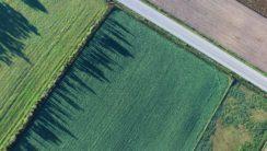 Нормативно-правовая база для повышения эффективности деятельности агрохолдингов